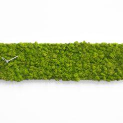 designové hodiny nástěnné zelené ze stabilizovaného lišejníku