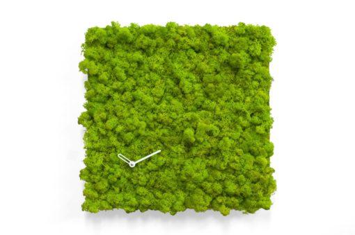čtvercové hodiny na stěnu z lišejníku a mechu zelené