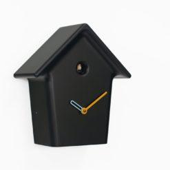 design černé kukačky boční pohled